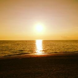 Woodlawn Sunset
